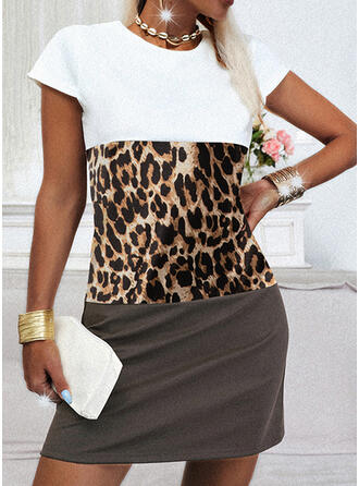 Color Block/Leopard Short Sleeves Sheath Above Knee Casual Dresses